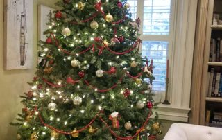 Manor of Hope christmas tree