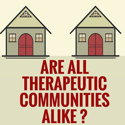 Are all therapeutic communities alike