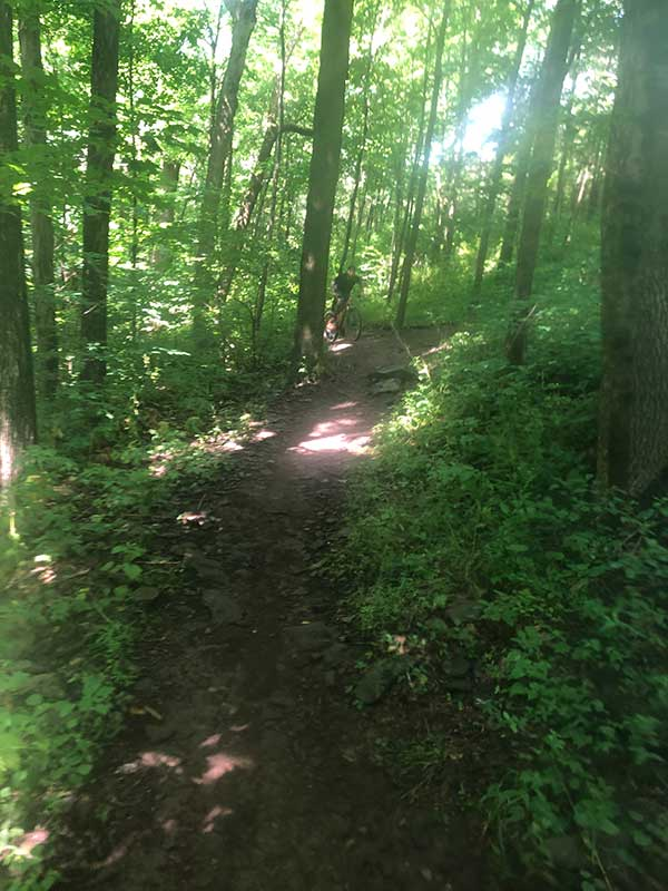 Hiking - manor of hope phoenixville pa