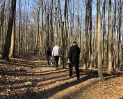hiking in valley forge park - manor of hope